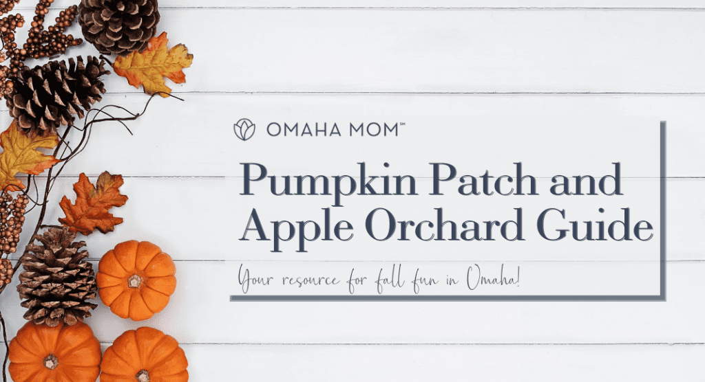 Pumpkin Patch and Apple Orchard Guide