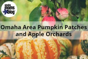Omaha Pumpkin Patches and Apple Orchards