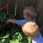 Gardening: A Tradition Rooted in Family
