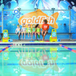 Goldfish Swim School:: Swim Progress Paradise