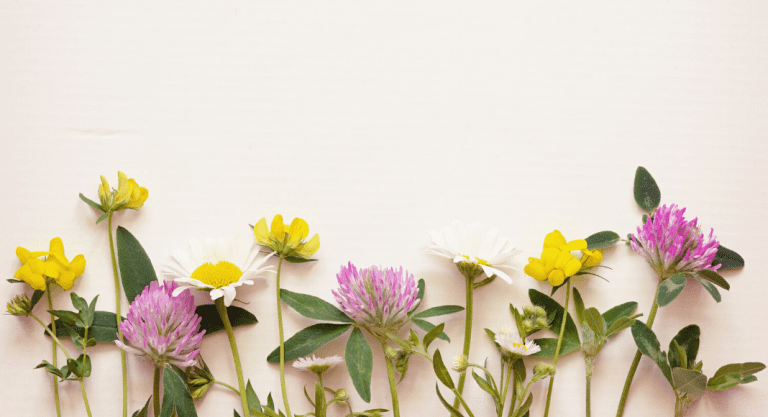 Gifts for Mom from Small Businesses:: Mother's Day Gifting Guide