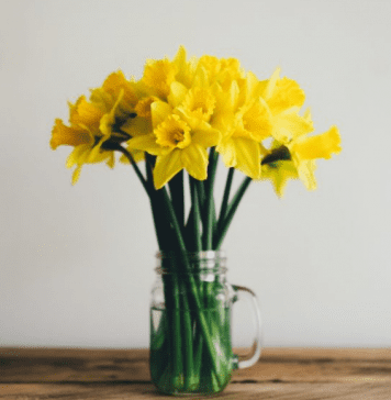 Four Ways to Welcome Spring Omaha Mom